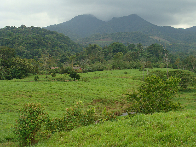 The green hills of Costa Rica
