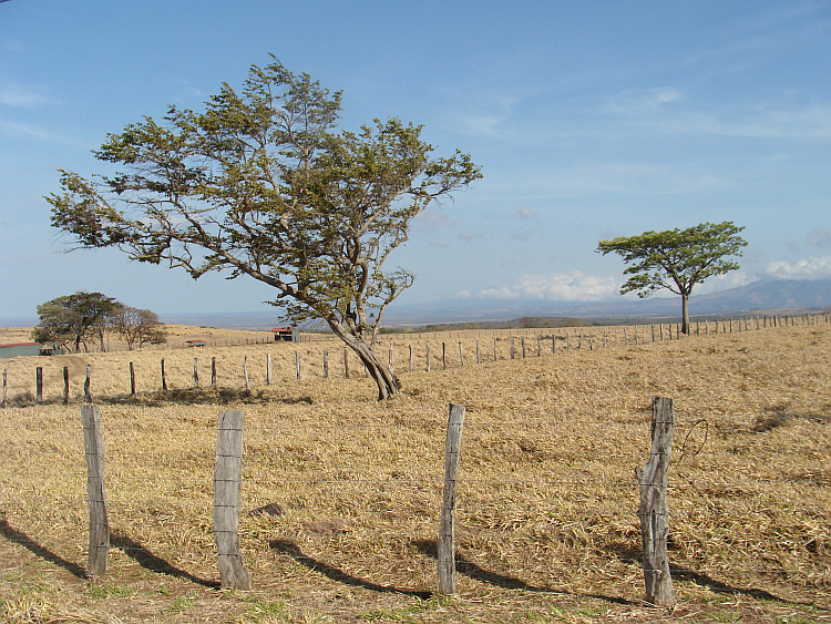 The dry north west of Costa Rica
