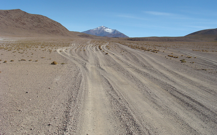 Between the Salar and the Lagunas