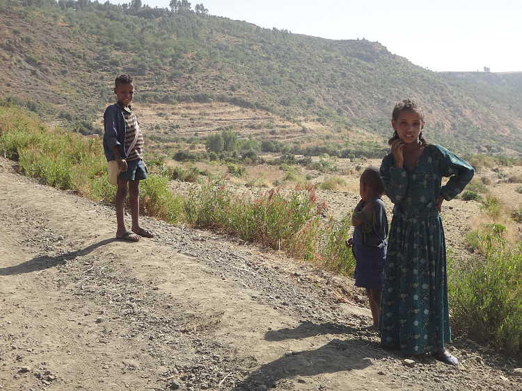 Children on the road to Alem Ketema