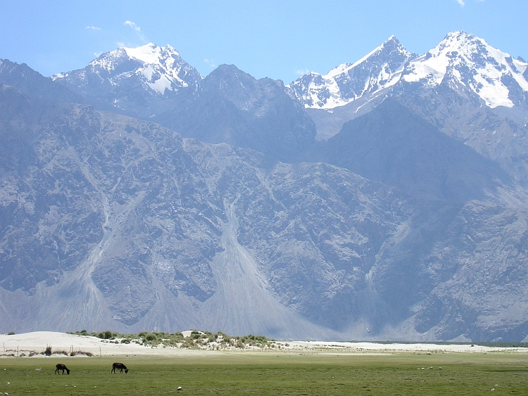 The Ladakh mountain range looms more than 3.000 meters above the Nubra Valley