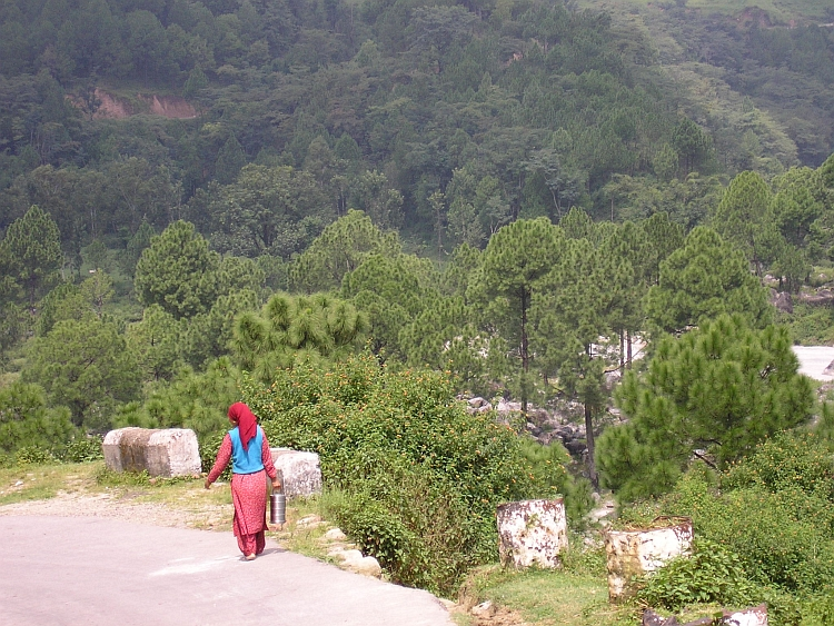 Woman with basket, Kangra Valley