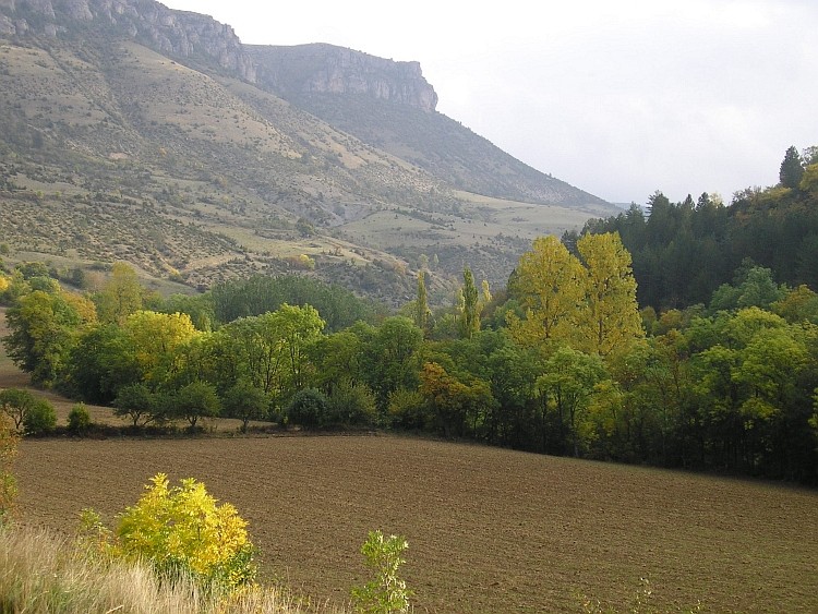 Deep Autumn in the Gorges de la Jonte