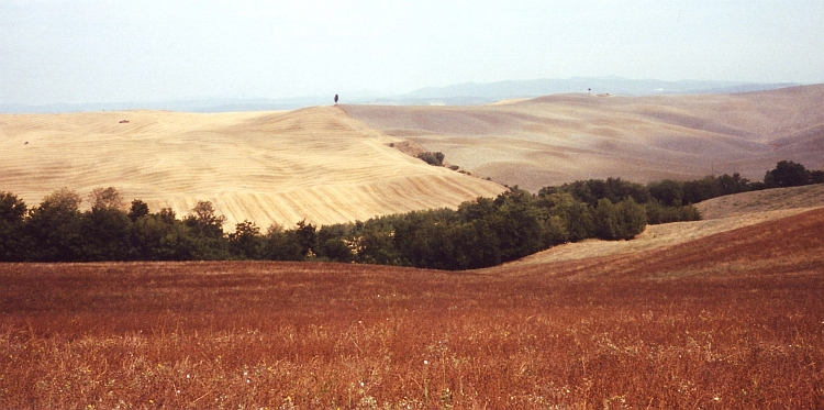 Rolling hills in the Crete Senesi, Tuscany