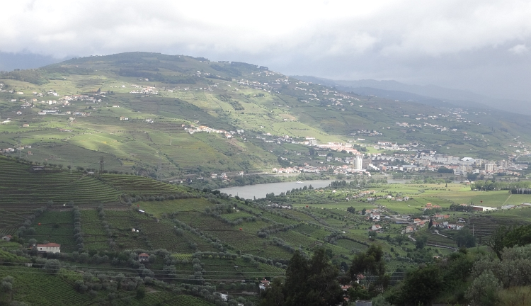 View over the Douro valley and Peso da Régua