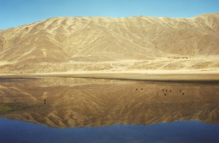 Reflections. The Altiplano sometimes literally acts as a mirror